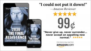 2036 The Final Resistance by Leah McClellan