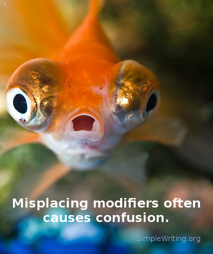 Misplacing modifiers and dangling participles frequently cause confusion.